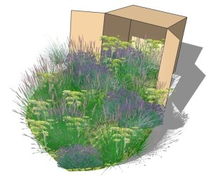 Meadow box - crop